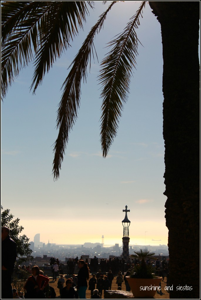 parc guell palm tree barcelona