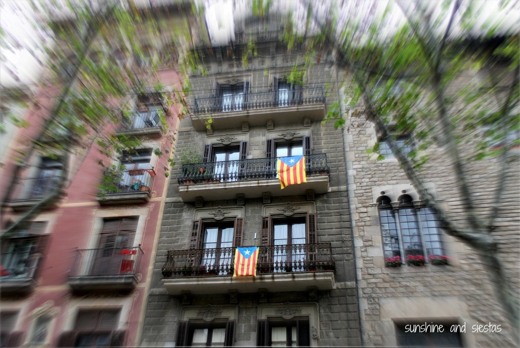 catalan flags independence barcelona