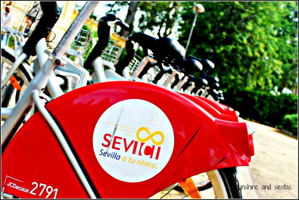 sevici bike tour seville