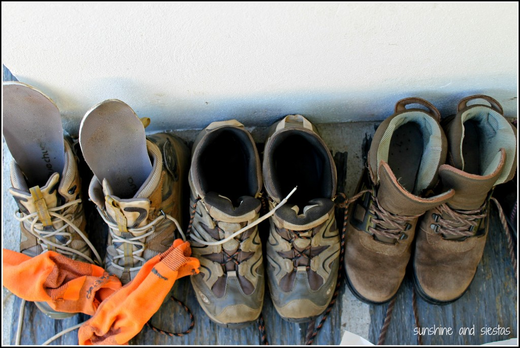 Life Lessons From The Camino De Santiago Sunshine And