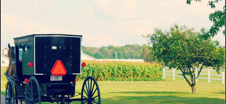 Amish buggies in Indiana