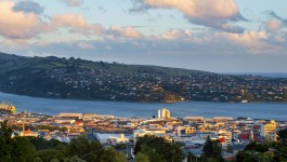Dunedin city, new zealand, during sunset