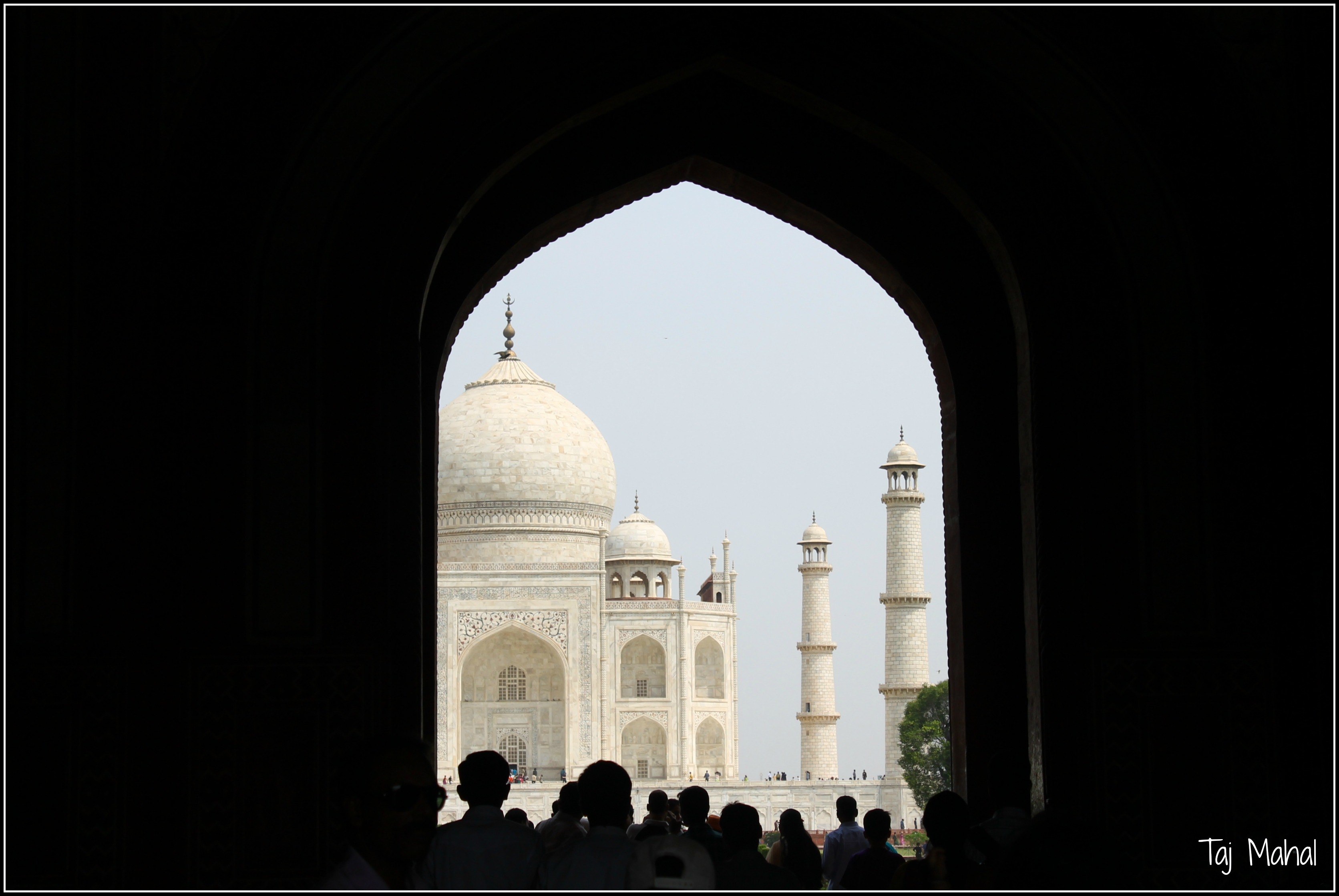 The Colors of India - Taj Mahal