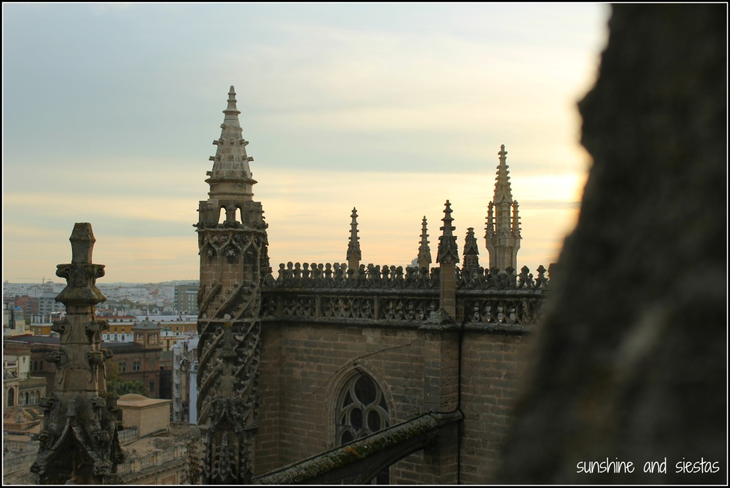 sunset from the seville cathedral