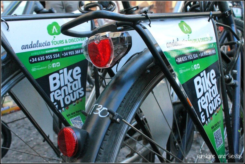 Andalucia Tours and Discovery Bike Rentals