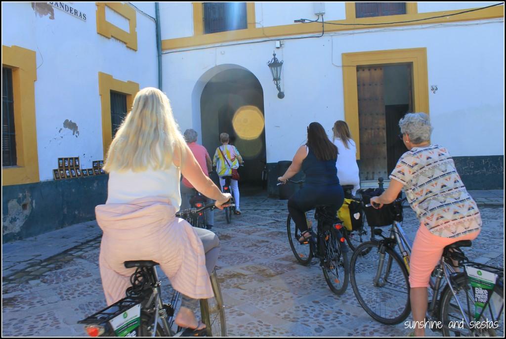 Tour por bici en Sevilla