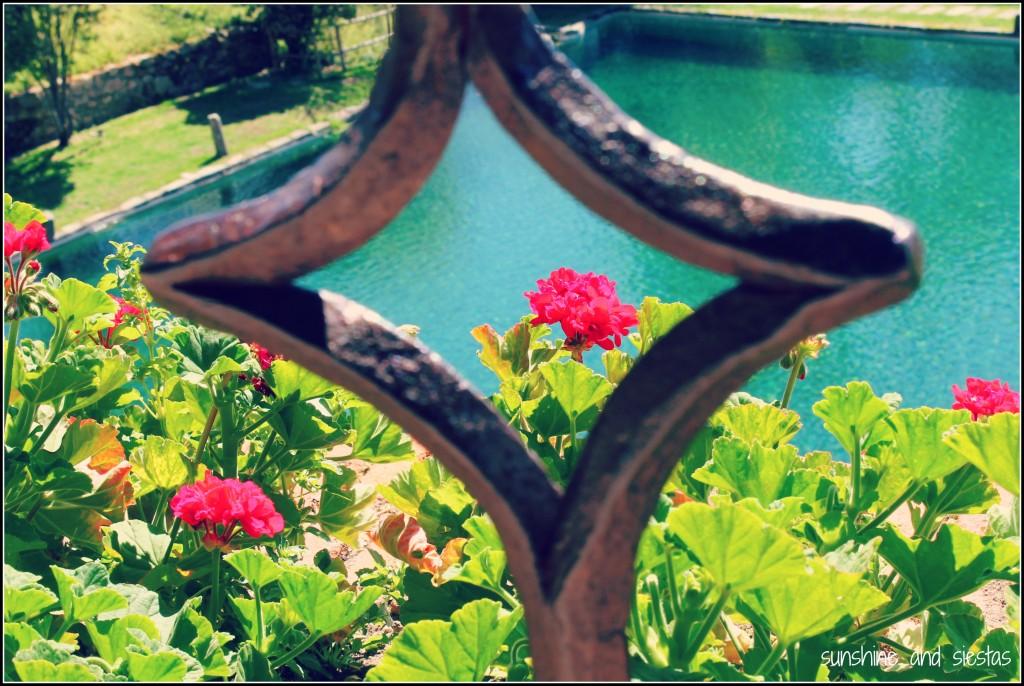 gardens yuste